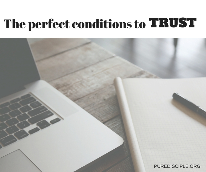 Perfect conditions to trust