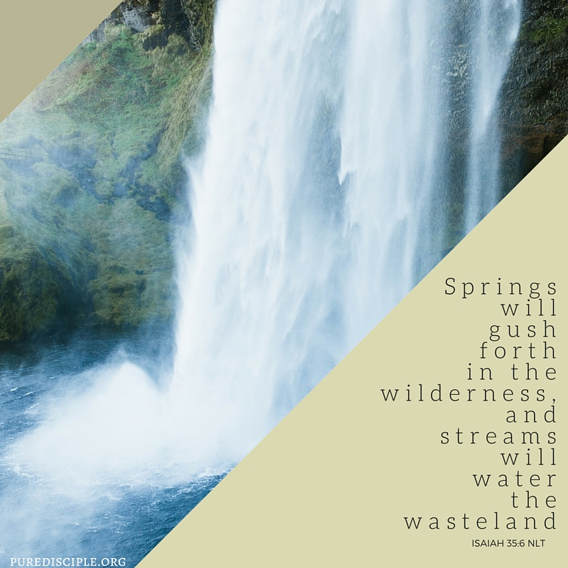 Springs will gush forth in the wilderness, and streams will water the wasteland.