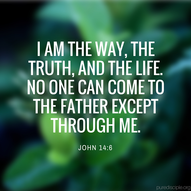 I am the way, the truth, and the life. No one can come to the Father except through me..jpg